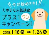 たのまな人気講座 プラス1(ワン)キャンペーン!